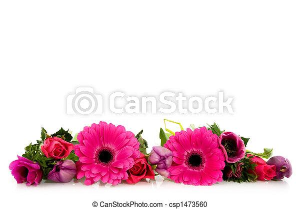 flores côr-de-rosa - csp1473560