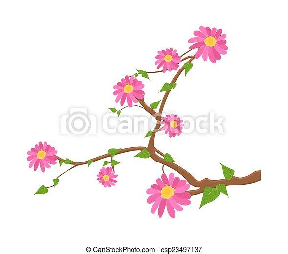flores côr-de-rosa, ramo - csp23497137