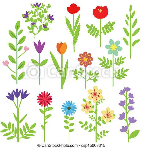 Flores listas - csp15003815