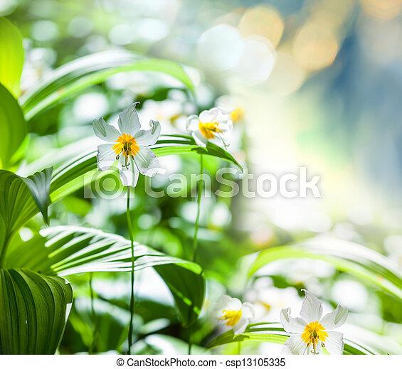 flores del resorte - csp13105335
