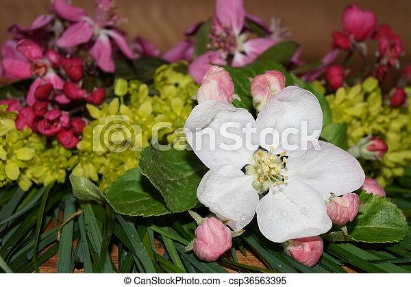 Flores de primavera coloridas - csp36563395