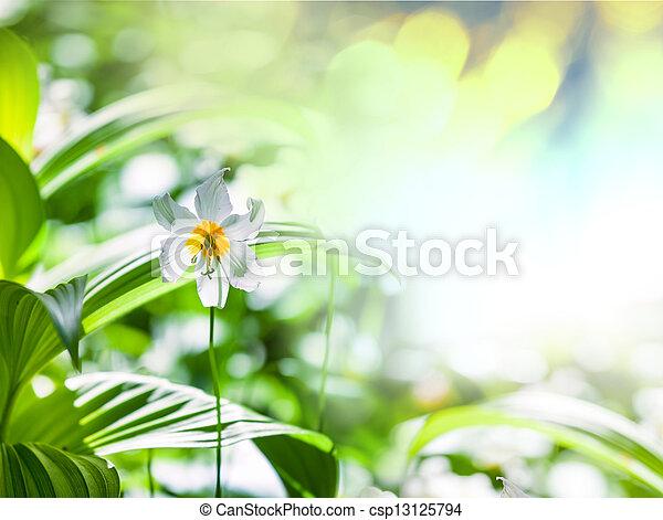 flores del resorte - csp13125794