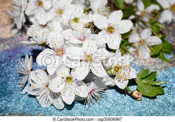 flores del resorte - csp35606997