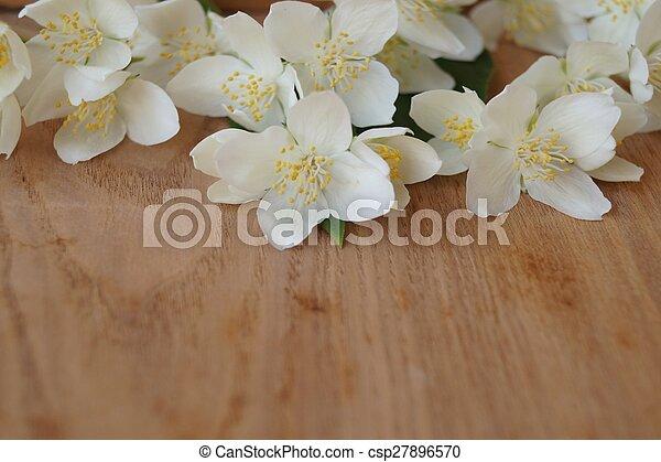Flores de primavera - jazmín - csp27896570