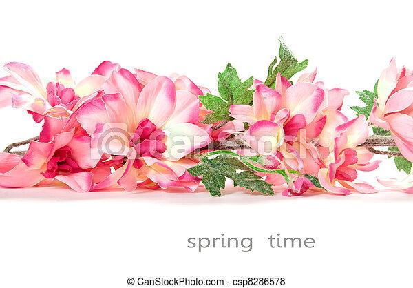 flores del resorte - csp8286578