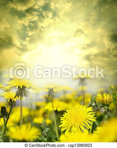 flores - csp13980923