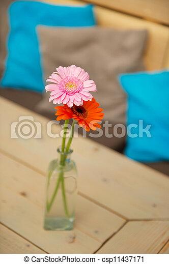 Flores de Gerber - csp11437171