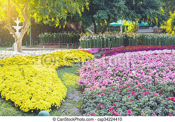flores, jardim - csp34224410