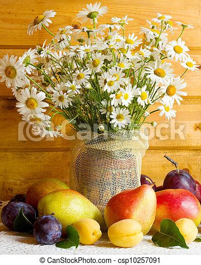 Daisy Flowers - csp10257091