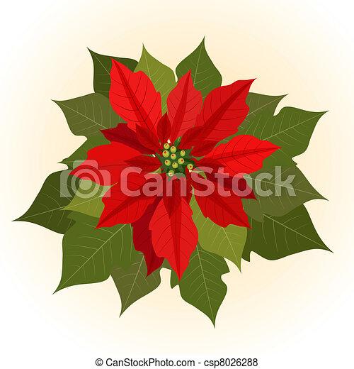 Flores, navidad, flor de nochebuena vector - Buscar imágenes de ...