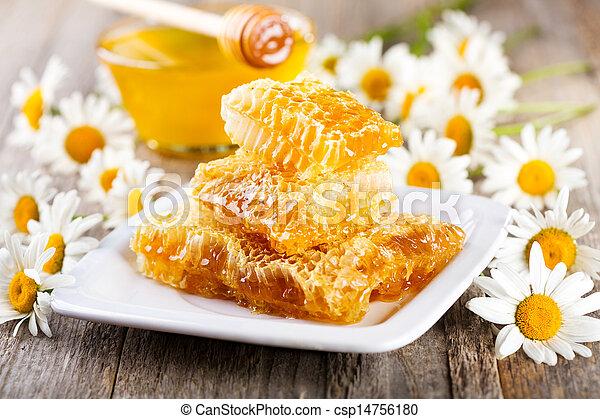 Cañerías con flores de margarita - csp14756180