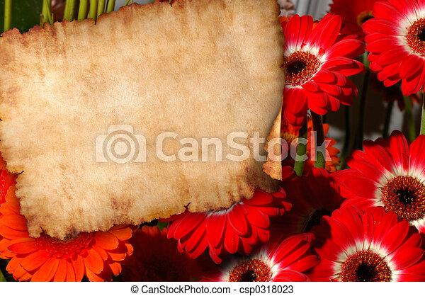 Pergamino en flores de fondo de letras retro - csp0318023