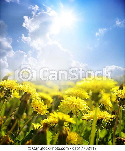 flores - csp17702117