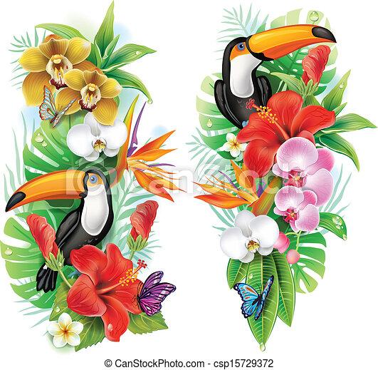 flores, tropical, mariposas, tucán - csp15729372