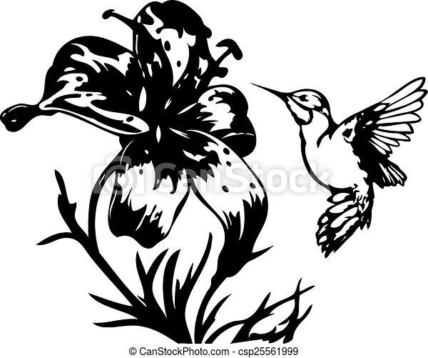 Flores Tropicales Colibrí Hermoso Separado Aislado Ilustración