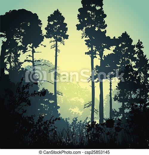 floresta, ilustração, manhã - csp25853145