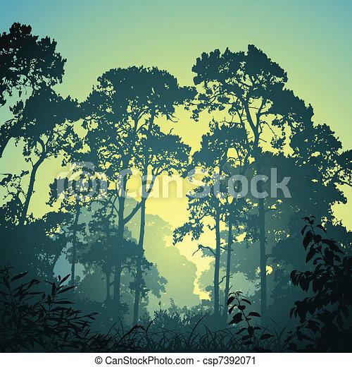 floresta, paisagem - csp7392071