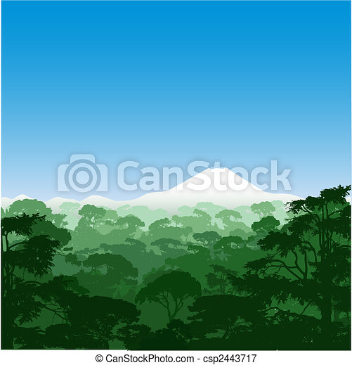 floresta, paisagem - csp2443717