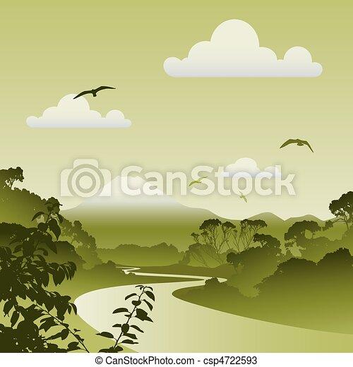floresta, paisagem - csp4722593