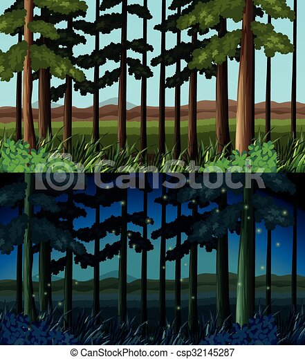 floresta, tempo, cena, dia, noturna - csp32145287