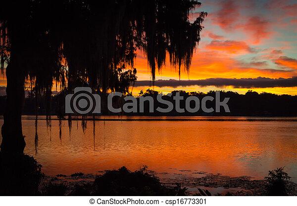 Florida Sunrise - csp16773301