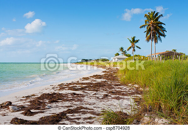 florida, tengerpart - csp8704928