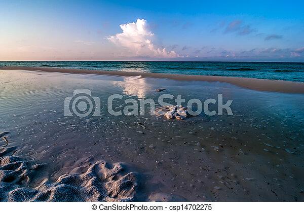 florida, tengerpart táj - csp14702275