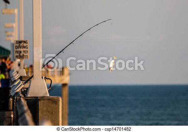 florida, tengerpart táj - csp14701482