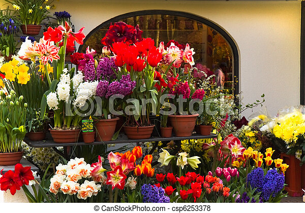 Florist shop with spring flowers - csp6253378
