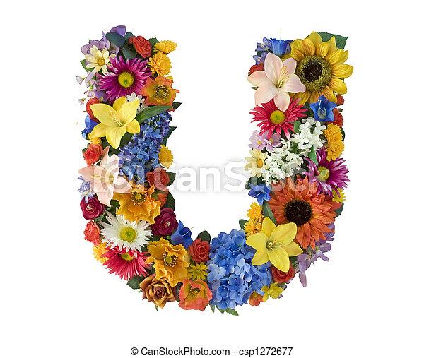 Flower Alphabet U Letter U Made Of Flowers Isolated On White