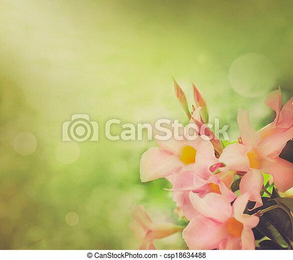 Flower background - csp18634488