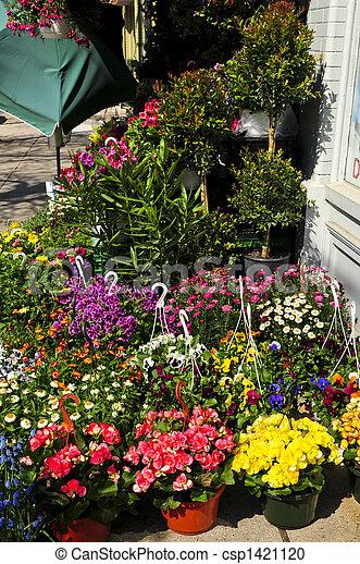 Flower baskets for sale - csp1421120