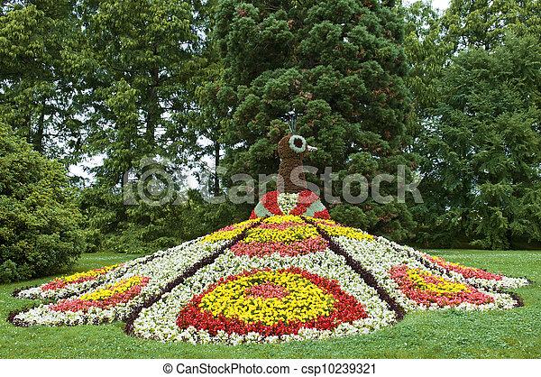 flower bed - csp10239321
