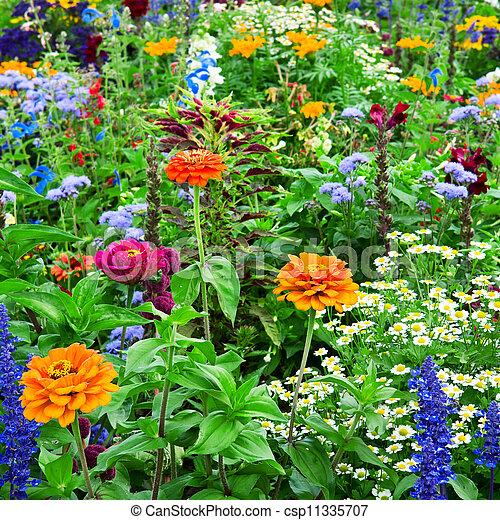 flower bed - csp11335707