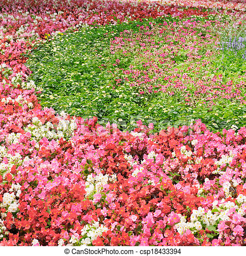 flower bed with bright summer flowers - csp18433394