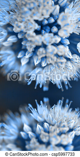 Flower bud abstract background - csp5997733