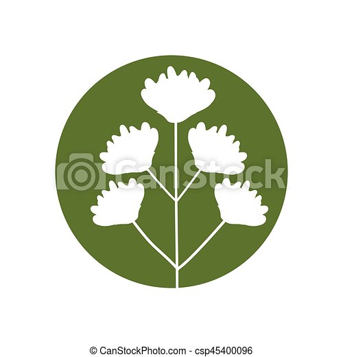flower delicate natural icon - csp45400096