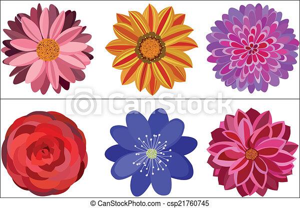 Flower - csp21760745