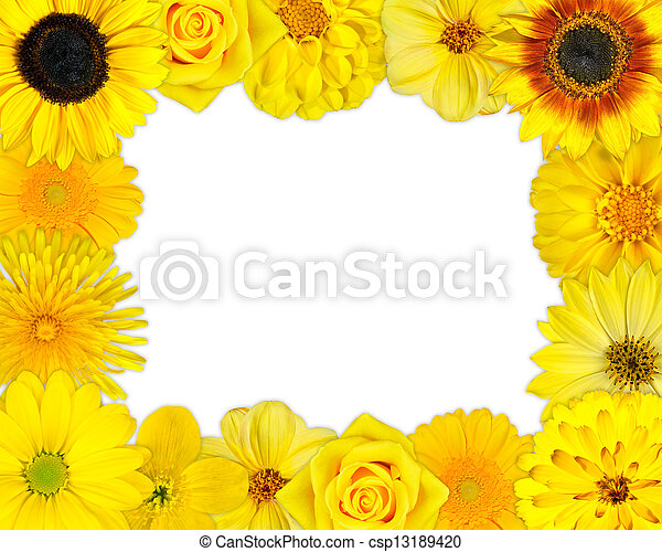 Flower Frame With Yellow Flowers On Blank Background Flower Frame