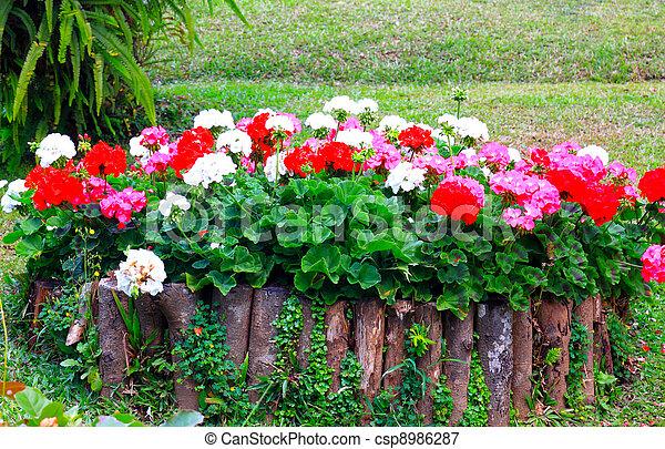 Flower garden background .