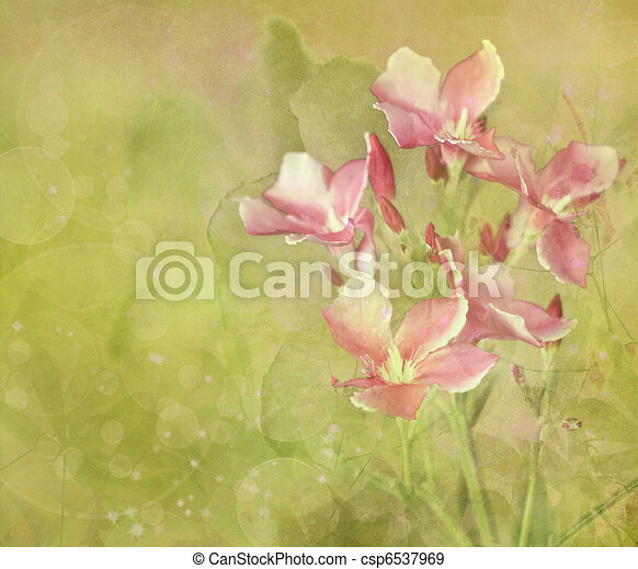 Flower Garden Digital Painting Background - csp6537969