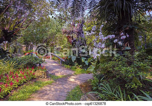 Flower garden in summer - csp61326878