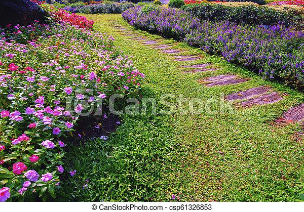 Flower garden in summer - csp61326853