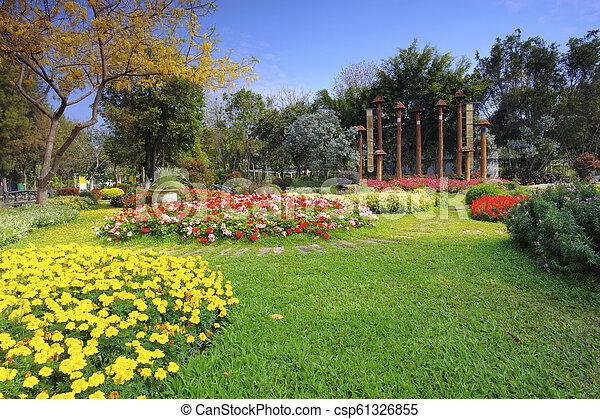 Flower garden in summer - csp61326855