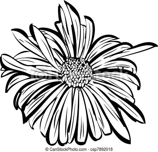 flower garden resembling a daisy - csp7892018
