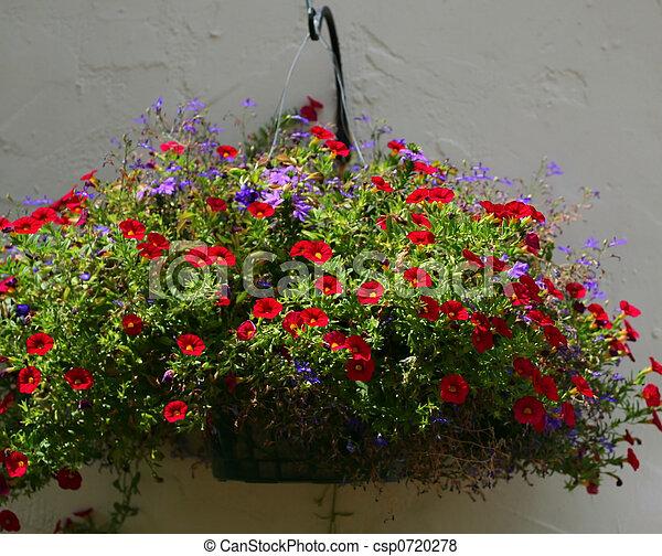 Flower hanging basket - csp0720278