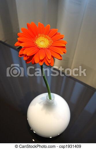 Flower in a vase - csp1931409