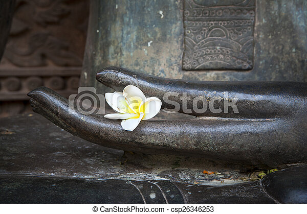 flower in hand image of buddha - csp26346253