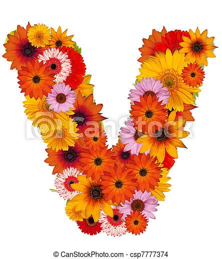 Flower letter flower alphabet isolated on white letter v flower letter csp7777374 thecheapjerseys Gallery