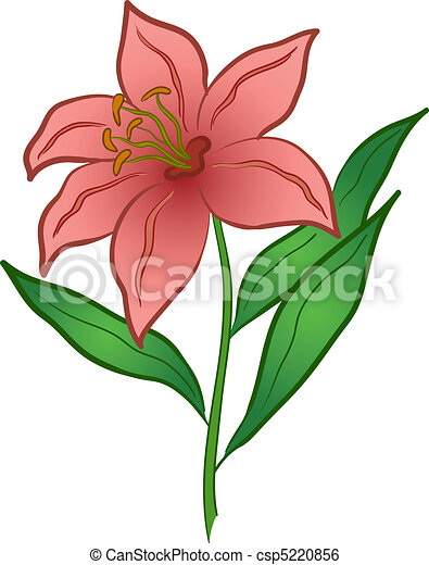 flower lily love symbol floral gift isolated rh canstockphoto com lily clipart images lily clipart free